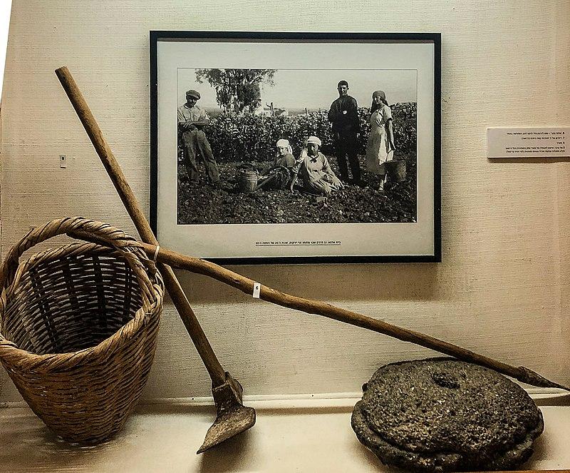 כלים חקלאיים