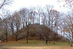 Pinson-mounds-sauls-mound.jpg