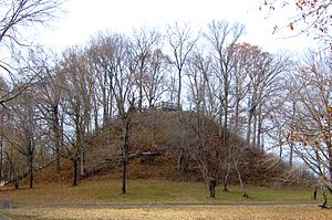 Pinson Mounds - Sauls' Mound (Mound 9) at the park