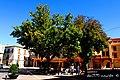 Plaza de la Constitución de Casas Ibáñez en un espléndido día otoñal - panoramio.jpg