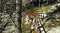 Pont, l'Ortet del Pobre - panoramio.jpg