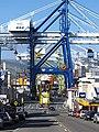 Port Otago Port Chalmers.jpg