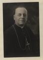 Portrait, cardinal (HS85-10-31817) original.tif
