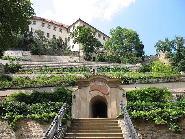 Palácové zahrady