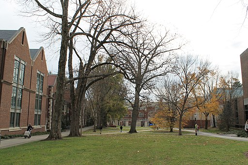 The campus of Princeton University (Image:Patrick Nouhailler via Wikimedia Commons)