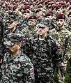 Pripadniki Slovenske vojske.jpg