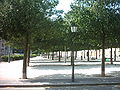 Promenade Saint-Antoine.JPG