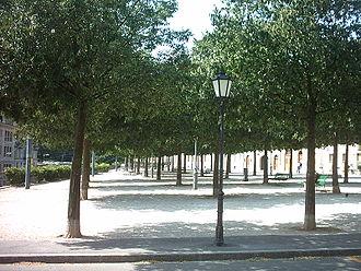 Bosquet - Bosquet in the Promenade Saint-Antoine, Geneva