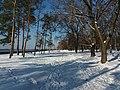 Prydniprovskyi Park (02.12.18) 02.jpg