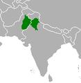 Punjabis.PNG