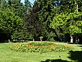 Queenstown Gardens, New Zealand (8).JPG
