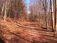 The former MM&WRR right of way prior to construction of the linear trail.