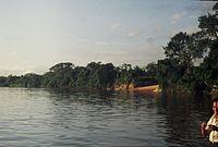 Río Caura.jpg