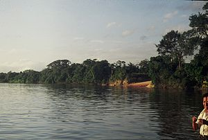 Caura River (Venezuela) - Caura River near Maripa, where a ferry crosses it (December 1979)