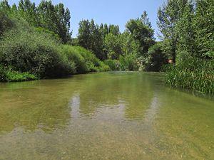 Río Duratón en la provincia de Valladolid.jpg