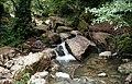 Río Guareña (4).jpg