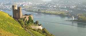 Rüdesheim am Rhein - Ruined castle Ehrenfels