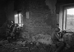 RIAN archive 594949 North-Western Front. Shooting at the enemy.jpg
