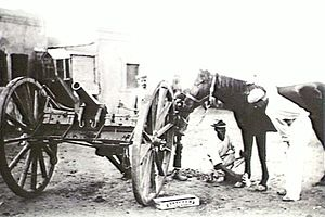RML 7 pounder Mountain Gun - Gun on field carriage at Mafeking