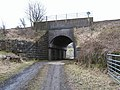 Railway Bridge over Netherton Farm Track - geograph.org.uk - 1767179.jpg