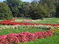 Rana jesen u čakovečkom parku.jpg