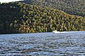 Raystown lake August 2016 - panoramio - Ron Shawley (136).jpg