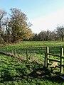 Redbridge Brook - geograph.org.uk - 1609107.jpg