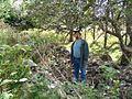 Remains of Ranald MacKinnon home.jpg