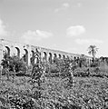 Restanten van een Turks aquaduct temidden van de velden, Bestanddeelnr 255-3198.jpg