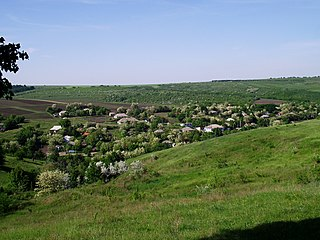 Rezina District, Moldova - panoramio (32).jpg