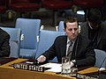 Richard Grenell at UN Security Council meeting.jpg