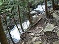 Ricketts Glen Forgotten Falls.JPG