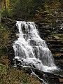 Ricketts Glen State Park Erie Falls 4.jpg