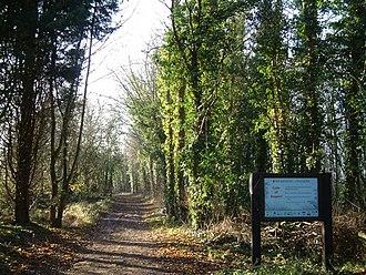 Swan's Way (footpath) - Image: Ridgeway, Swan's Way and Icknield Way geograph.org.uk 93443