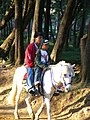 Riding a horse at the wright park.jpg