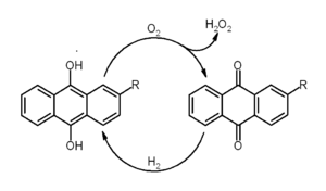 Anthraquinone - Catalytic hydrogen peroxide production with the anthraquinone process