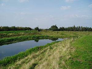 River Glen, Lincolnshire - The bend in the river at Guthram Gowt, where the junction with the proposed Fens Link will probably be located.