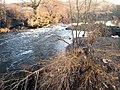 River Don at Kilnhurst - geograph.org.uk - 692016.jpg