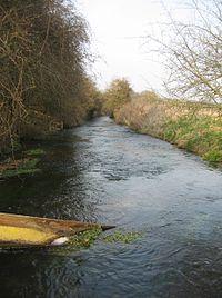 River Loddon - geograph.org.uk - 1238119.jpg
