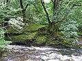 River Nedd Fechan, Pont Melin-Fach - geograph.org.uk - 917315.jpg