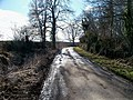 Road to Guiting Power - geograph.org.uk - 1750280.jpg