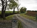 Road to South Farm - geograph.org.uk - 1569609.jpg