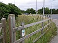 Roadside Nature Reserve - geograph.org.uk - 952770.jpg