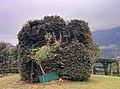 Roccolo - panoramio (4).jpg