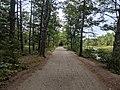 Rockingham Recreational Rail Trail, Fremont Branch, Sandown NH.jpg