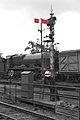 Ropley Signal - Mid Hants Railway (9112655707).jpg