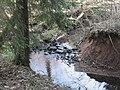 Rotenbach im Matzengehrer Wald in KUrve mit kleinem Fall.jpg