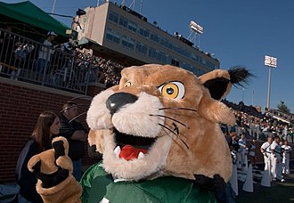 Rufus the Bobcat - Rufus the Bobcat ignites a home football crowd!