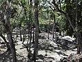 Ruinas MAYA Copan Honduras 11.jpg