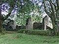 Ruined Farmstead, Nant Carfan, Ceredigion - geograph.org.uk - 563846.jpg